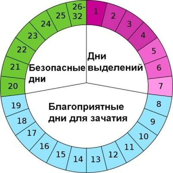 Двойная овуляция  в одном цикле месячных. такое возможно?