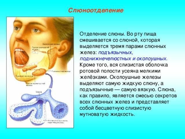 Стягивает рот. почему вяжет во рту: причины, симптомы, лечение