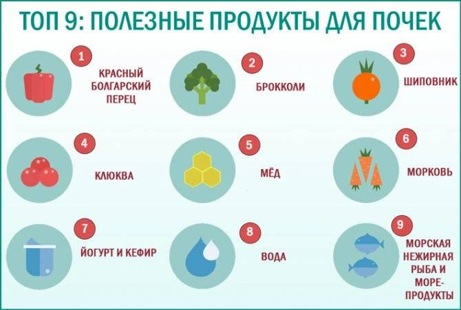 Лечебная диета при острых и хронических циститах и пиелонефритах у взрослых и детей