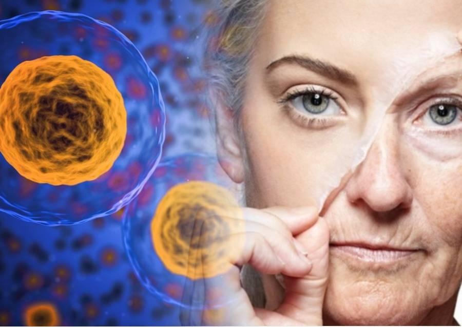 Отопластика - хирургическое вмешательство для коррекции ушных раковин