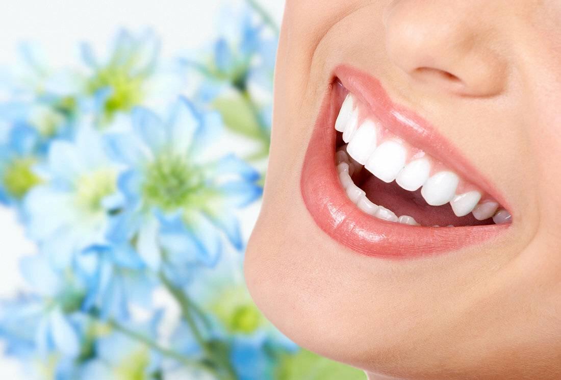 Лечебные травы для зубов и десен — полезные рецепты фитотерапии