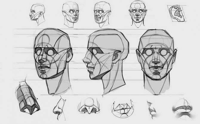 Как научиться рисовать людей поэтапно