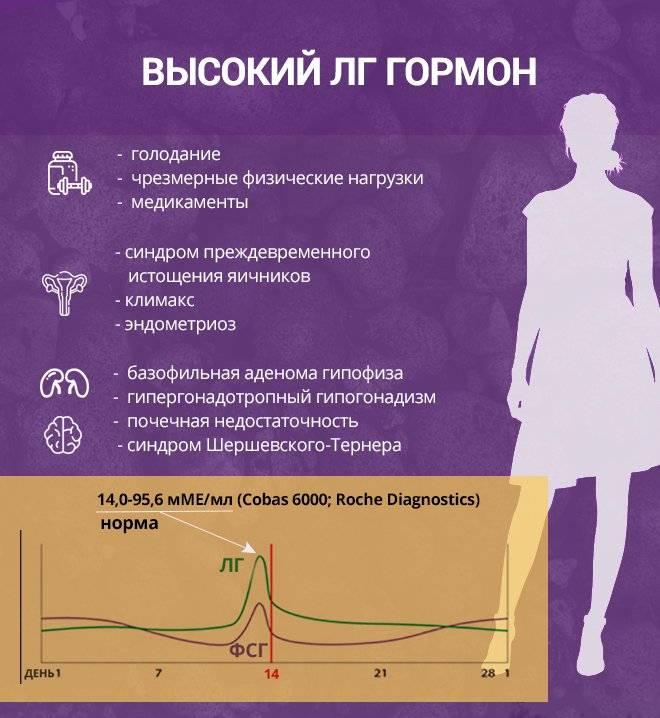Повышен эстрадиол у женщин и мужчин