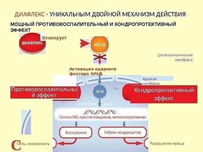 Бьютель при биоревитализации — разбор состава и особенности применения препарата