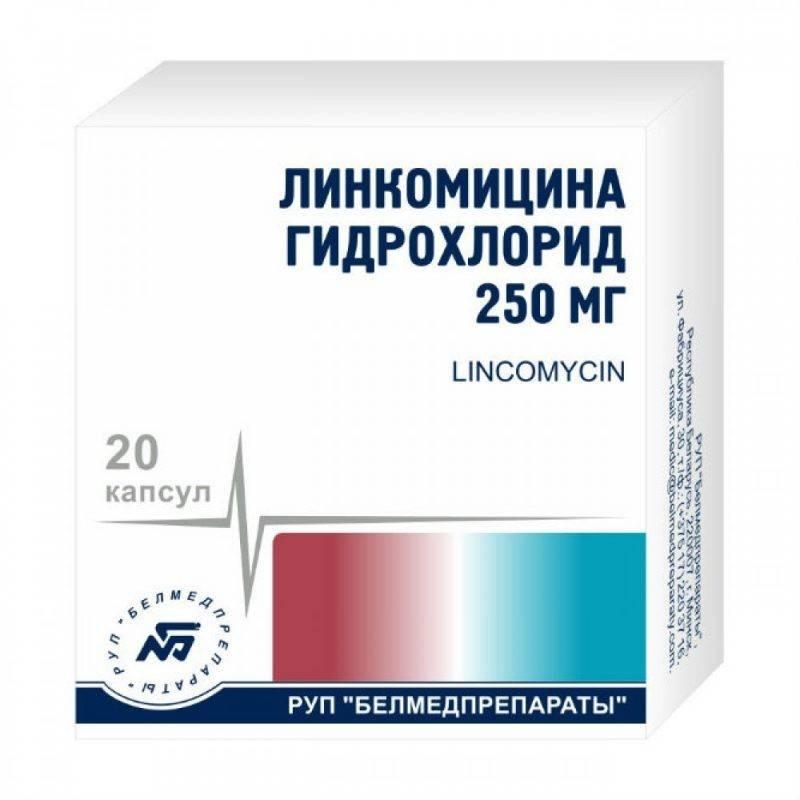 Как применяется препарат линкомицин в стоматологии