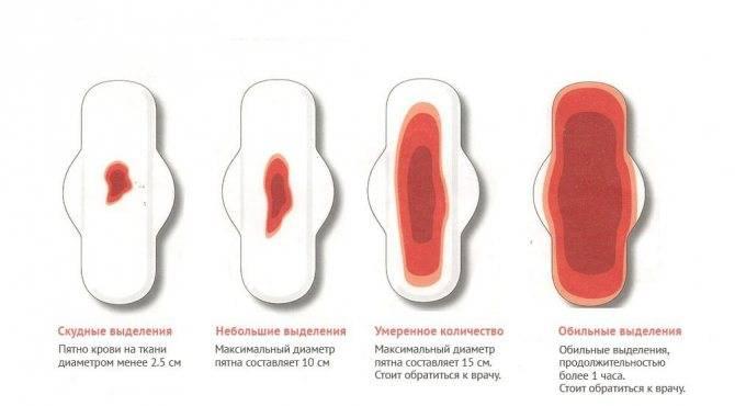 Первые месячные после родов: когда ждать, и какими они должны быть в норме