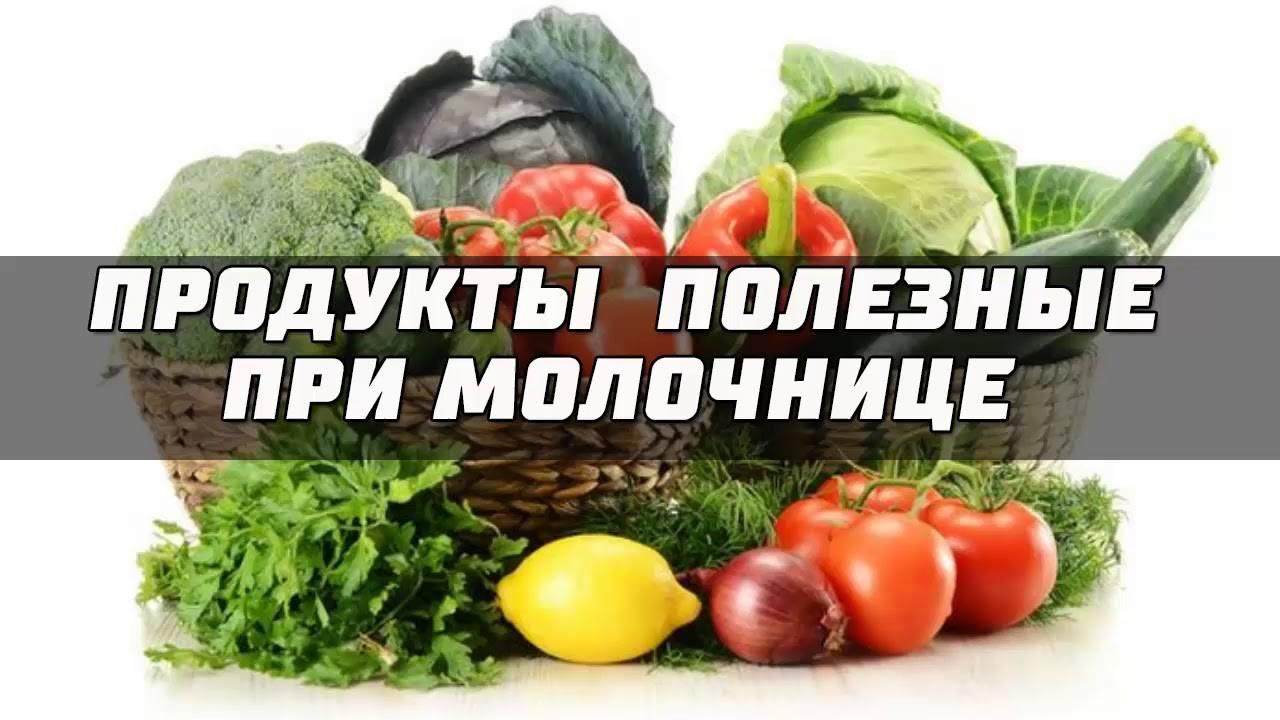 Диета при кандидозе кишечника: принципы выбора продуктов, меню и рецепты
