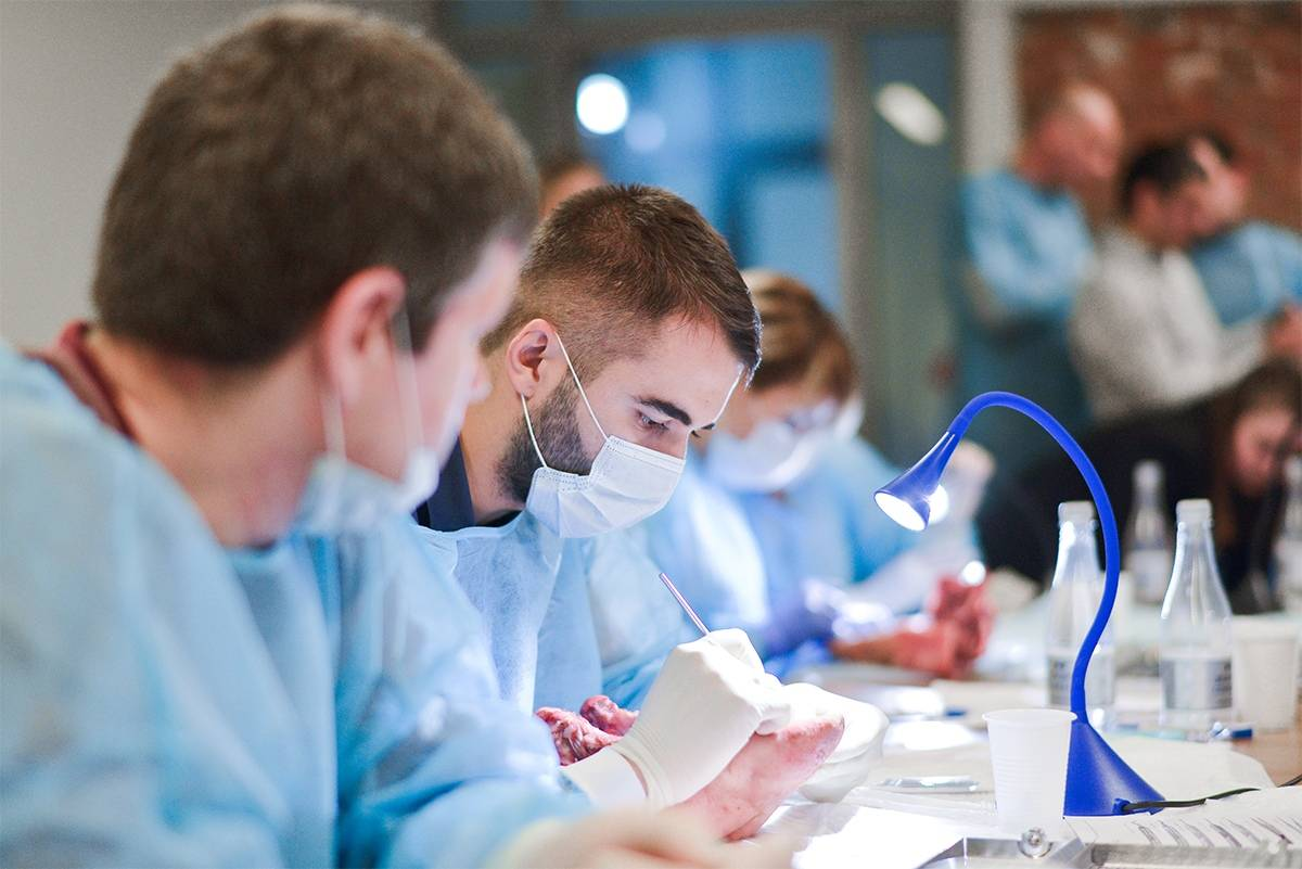 Сколько времени учиться на зубного техника