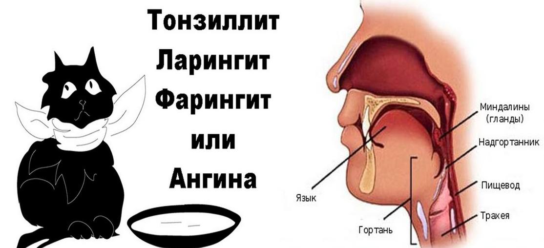 Болит корень языка – что вызывает патологию?