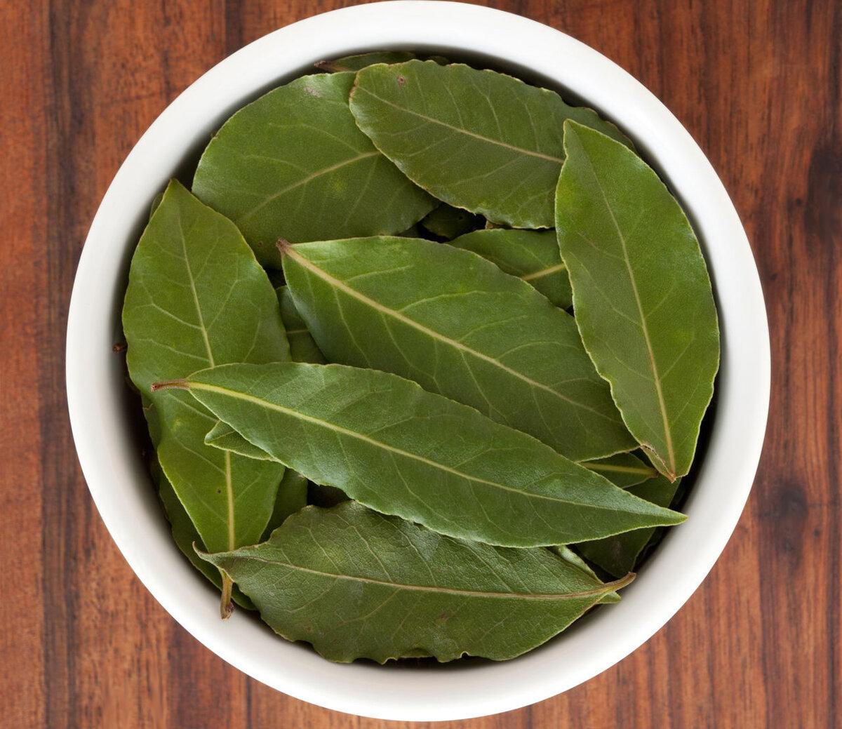 Лавровый лист: лечебные свойства и противопоказания для женщин (при задержке месячных, климаксе, цистите)