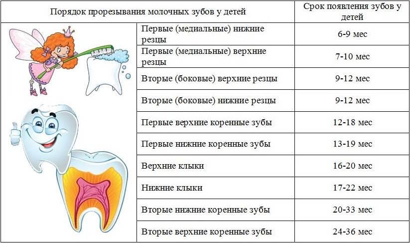 Когда нужно сбивать температуру при прорезывании зубов у детей?
