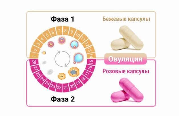 Способы привести в порядок менструальный цикл