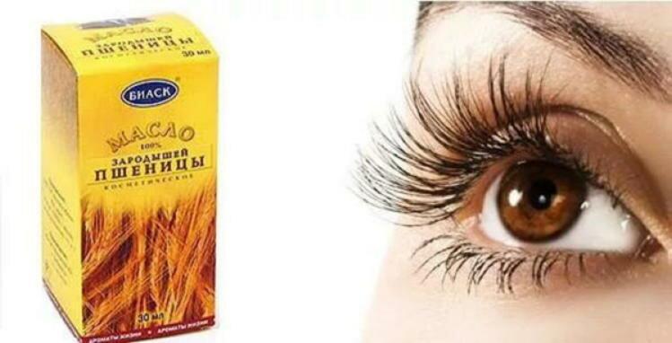 Как применять масло зародышей пшеницы для красоты ресниц: правила и меры предосторожности
