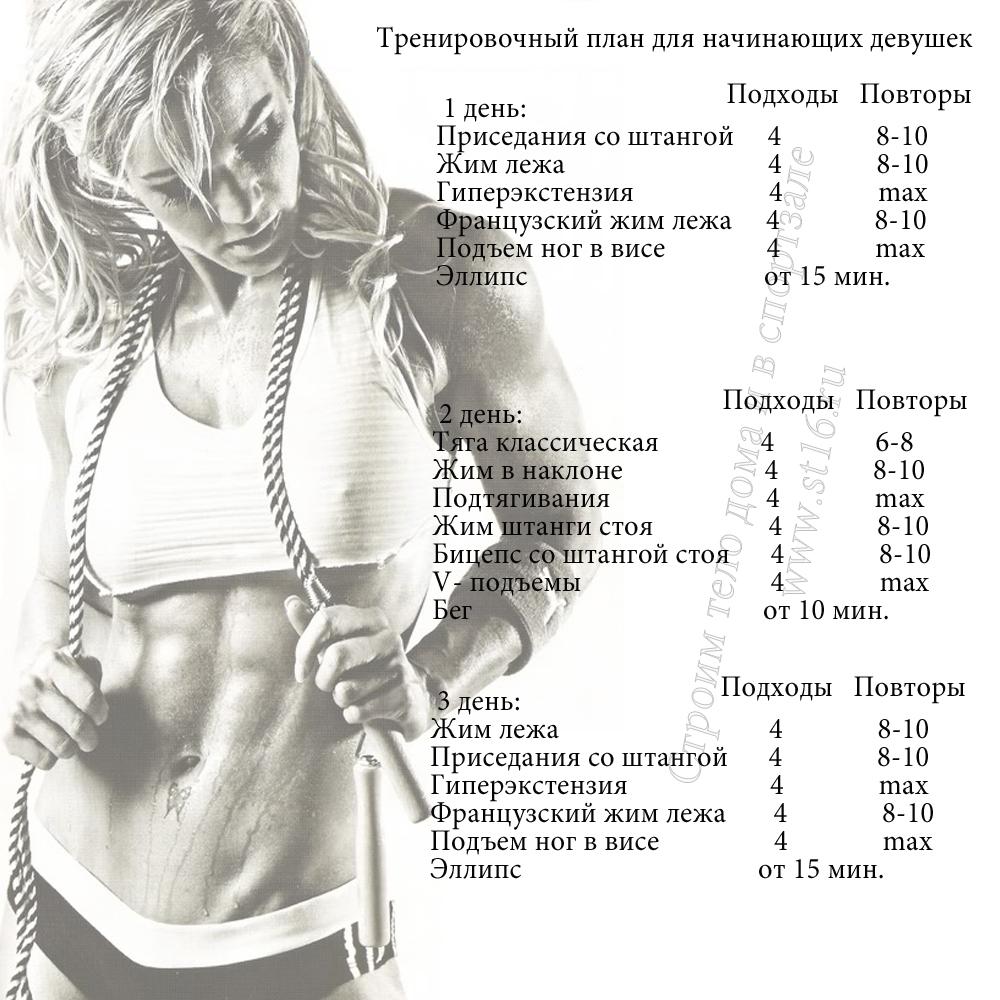 Тренировки для начинающих в спортзале в картинках