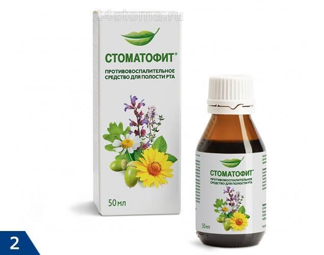 Стоматофит — виды и инструкция для всех членов семьи