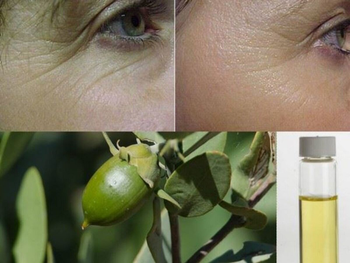 Нежное масло жожоба: свойства и применение для лица