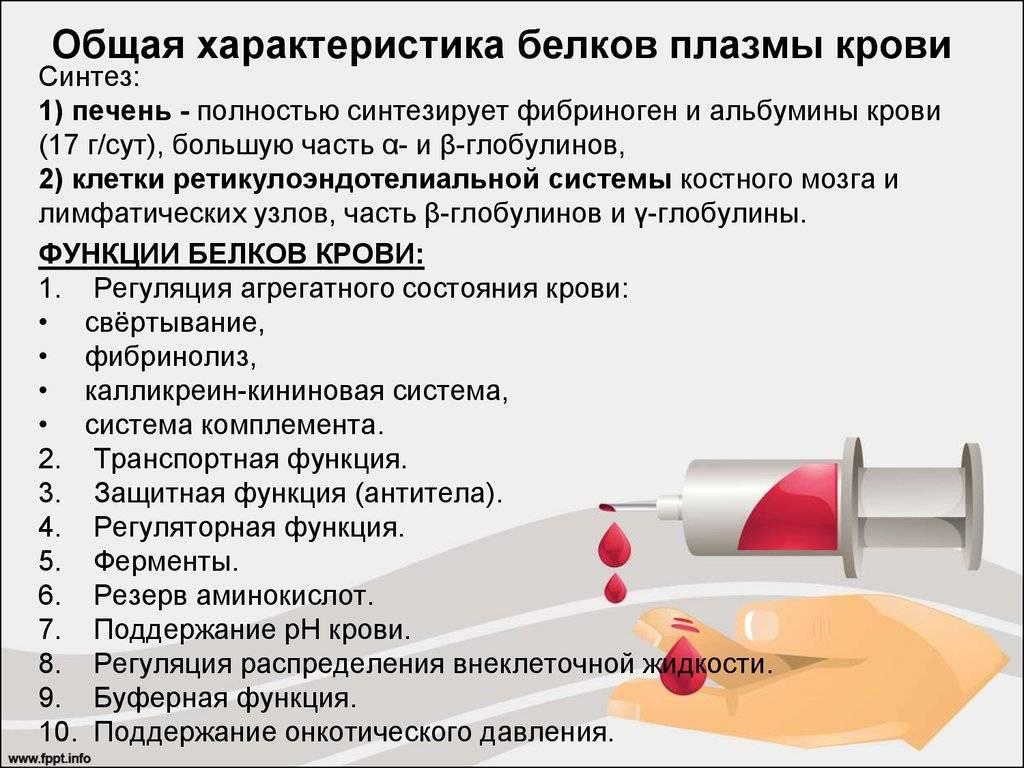 Состав плазмы крови — будьте здоровы