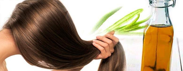 Варианты применения розмарина для волос