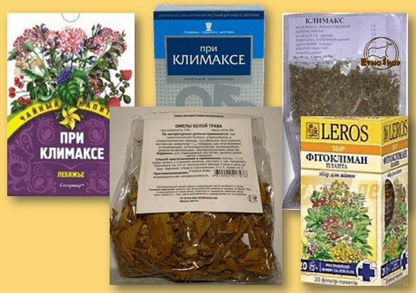 Травы при климаксе: помоги себе сама