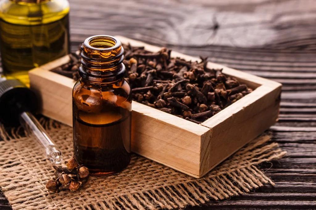 Эфирное масло гвоздики какими свойствами обладает как применять для лечения и в быту