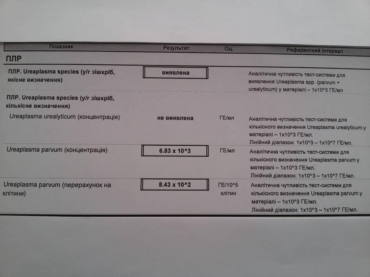Ureaplasma urealyticum: характеристика, анализы, симптомы у женщин и мужчин, лечение