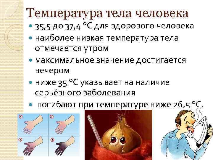 Пониженная температура тела человека причины