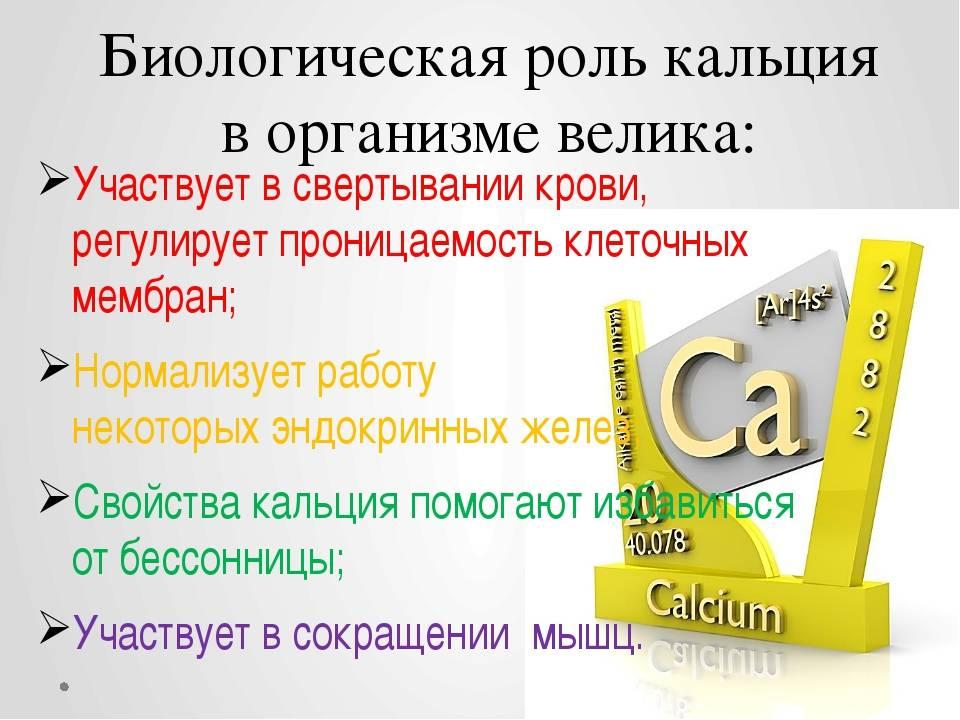 Кальций. основной строительный материал