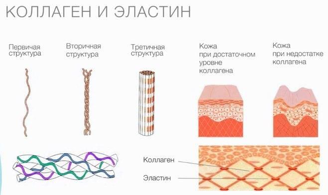 Чем полезна гиалуроновая кислота для кожи? что эффективнее уколы или таблетки.