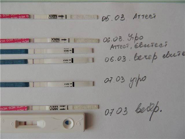 Как отличить выкидыш на раннем сроке от месячных. как происходит выкидыш на ранних сроках: симптомы, признаки и причины