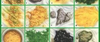 Кислый запах кала: причины, диагностика, методы лечения