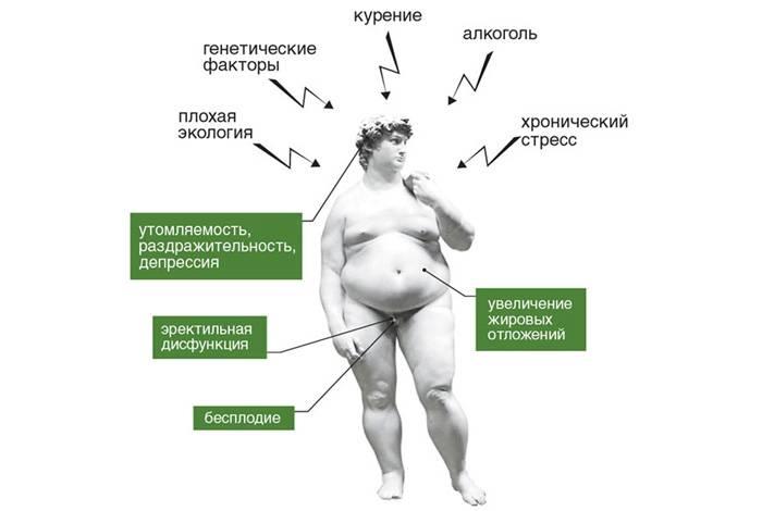 Различные способы снизить уровень эстрогена: препараты, народные методы и диета