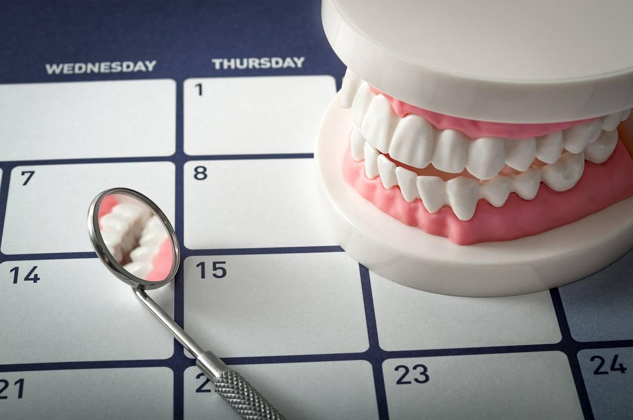 Зубы, корневые каналы, топография, доступ, сколько каналов в зубе