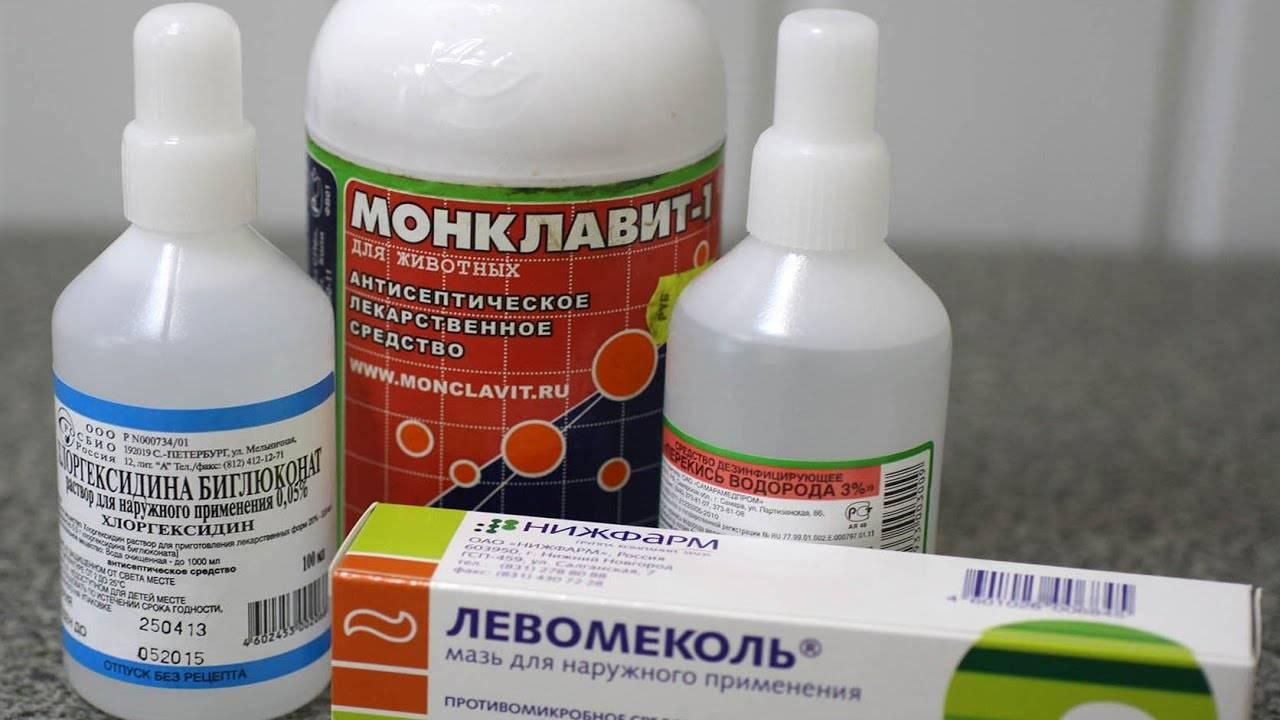 Мирамистин и хлоргексидин: в чем разница между этими препаратами