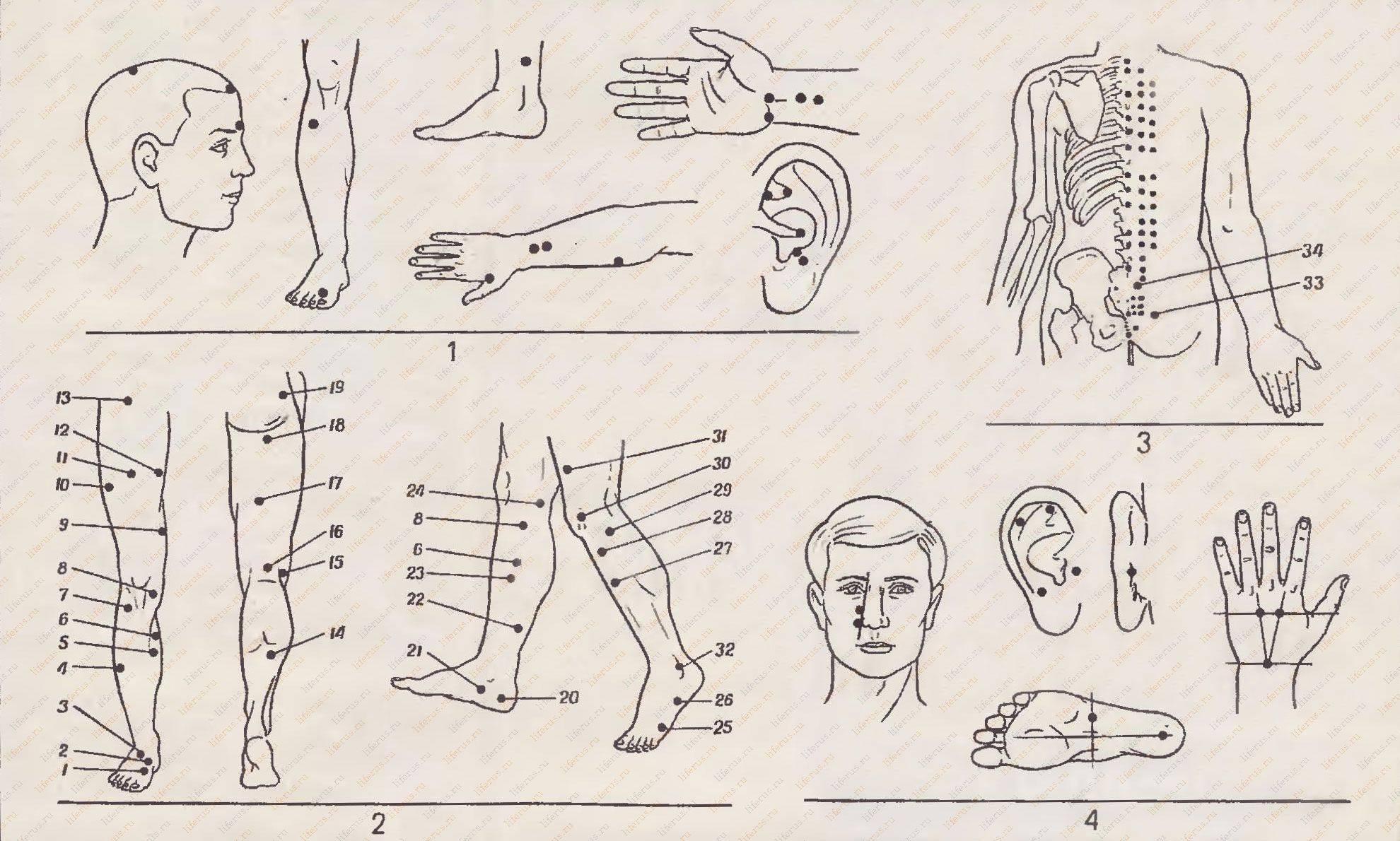 Точечный массаж шиацу для омоложения лица: техника выполнения, комплекс упражнений