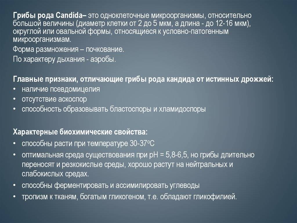 Грибок на языке: признаки и профилактика белого налета