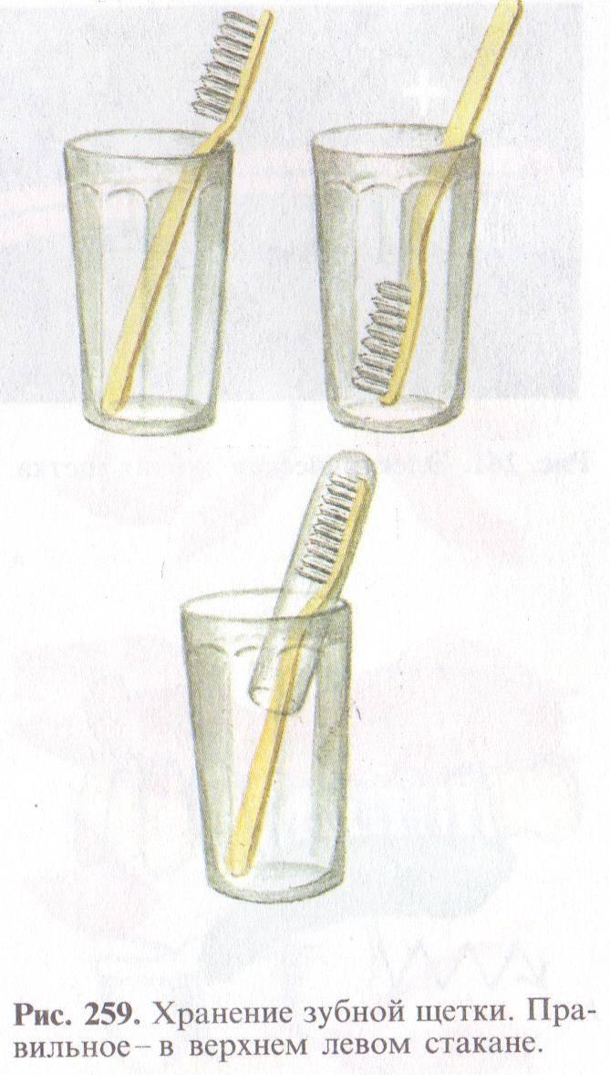 Уход за зубными протезами: чем и как правильно чистить съемные конструкции?