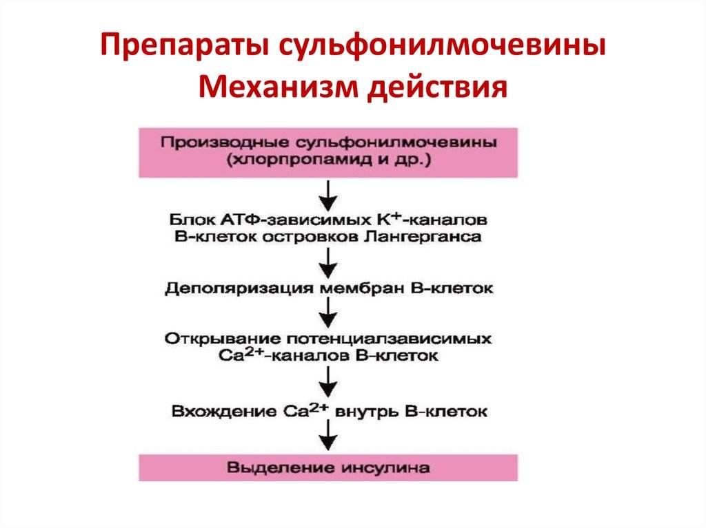 Биоревитализация препаратом бьютель