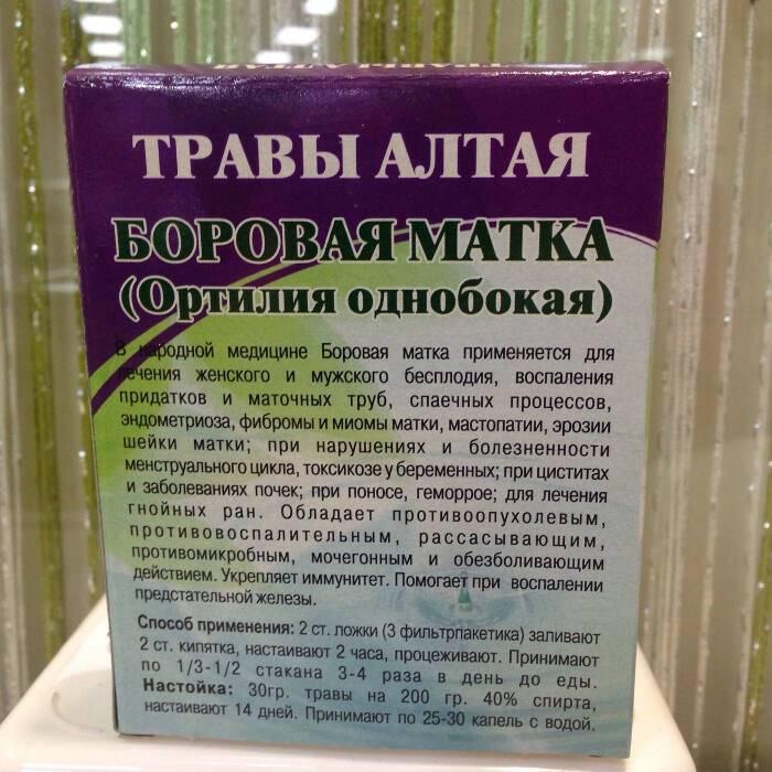 Лечение поликистоза яичников боровой маткой