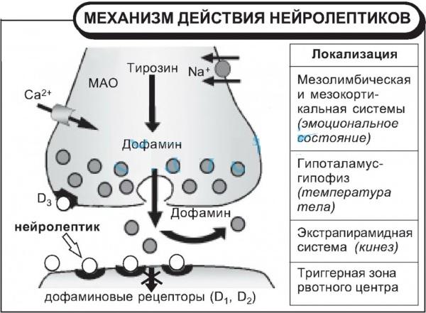Бьютель — описание препарата, механизм действия, показания, результаты
