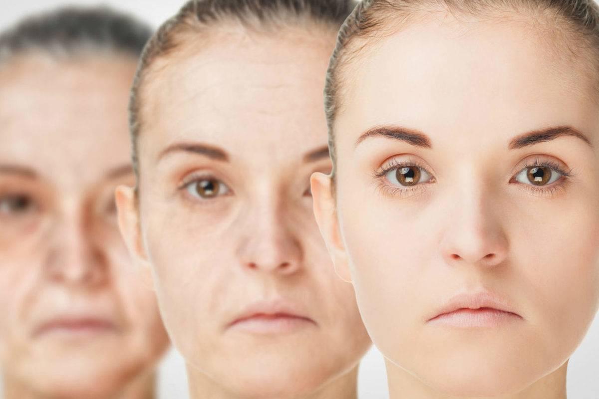Борьба со старением и продление молодости