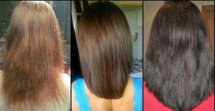 Как применять подсолнечное масло для ухода за волосами — маски и отзывы от использования