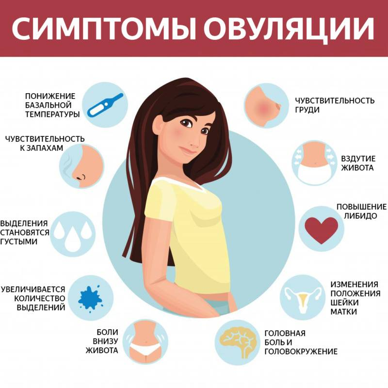 Зачатие по дням после овуляции. как узнать, какие выделения, ощущения, что происходит