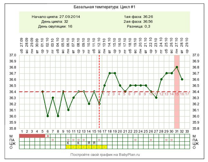 Как правильно измерить базальную температуру для определения беременности