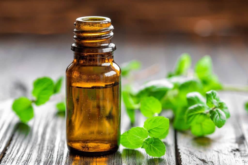 Свойства эфирного масла мяты. применение масла мяты для кожи, тела, лица, волос в домашних условиях