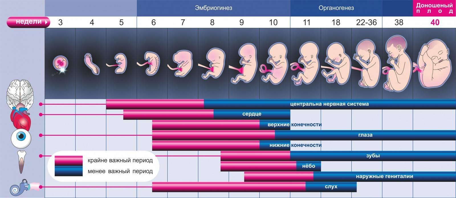 Противопоказана ли лазерная эпиляция во время беременности?