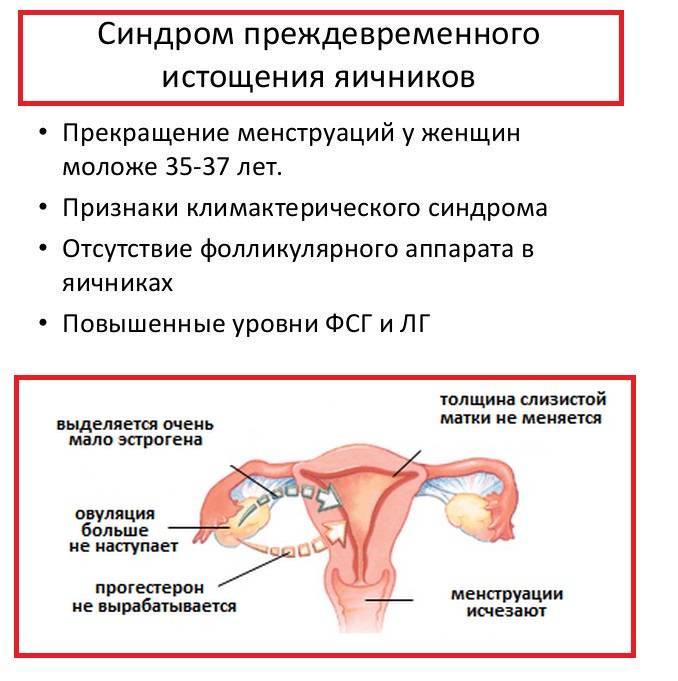 Преждевременное истощение яичников — причины, лечение