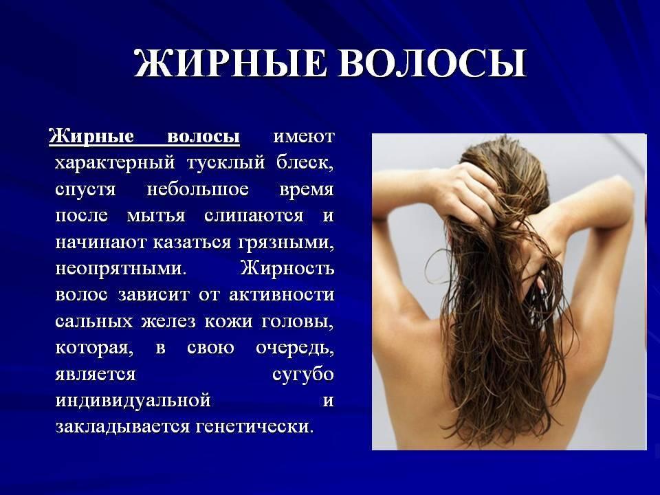 Лечение жирных волос. советы трихолога