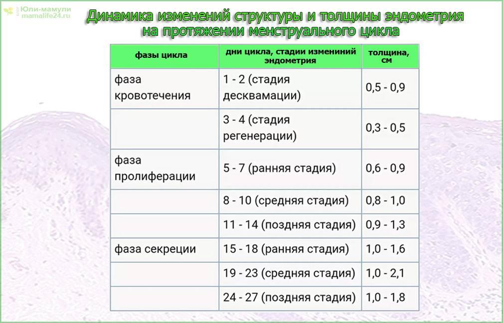 Эндометрий 5 мм возможна ли беременность