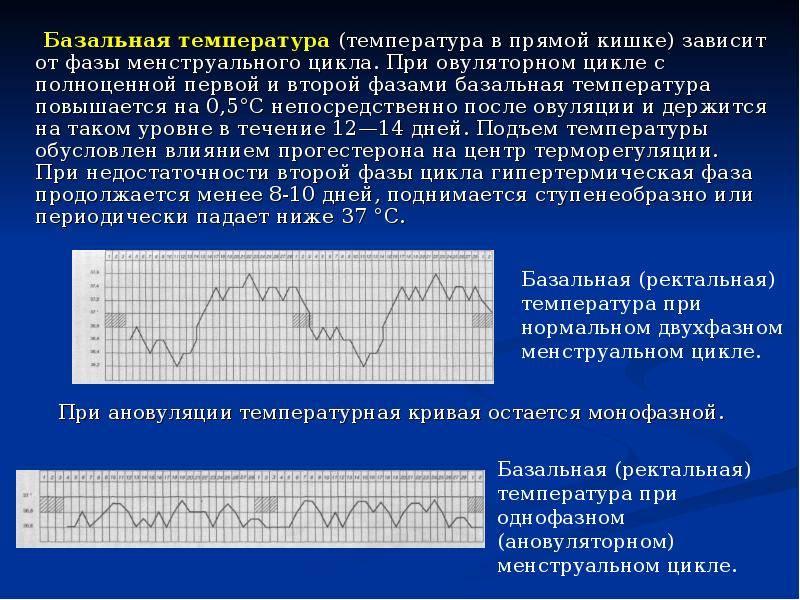Как измерить базальную температуру для определения беременности. измерение базальной температуры (бт). правила. расшифровка графиков базальной температуры