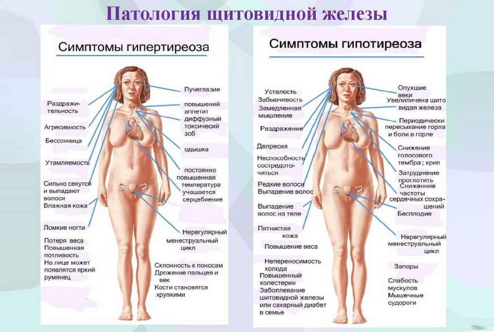 Гормональный сбой у женщин лечение народными средствами